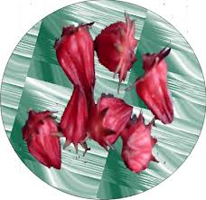 Manfaat Kelopak Bunga Rosella